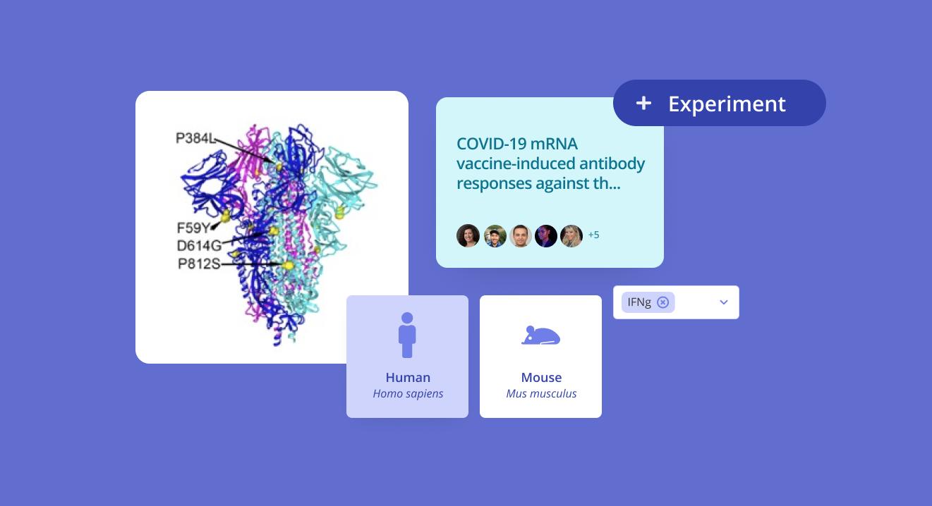 Research spotlight: COVID-19 mRNA vaccine antibody responses against new variants
