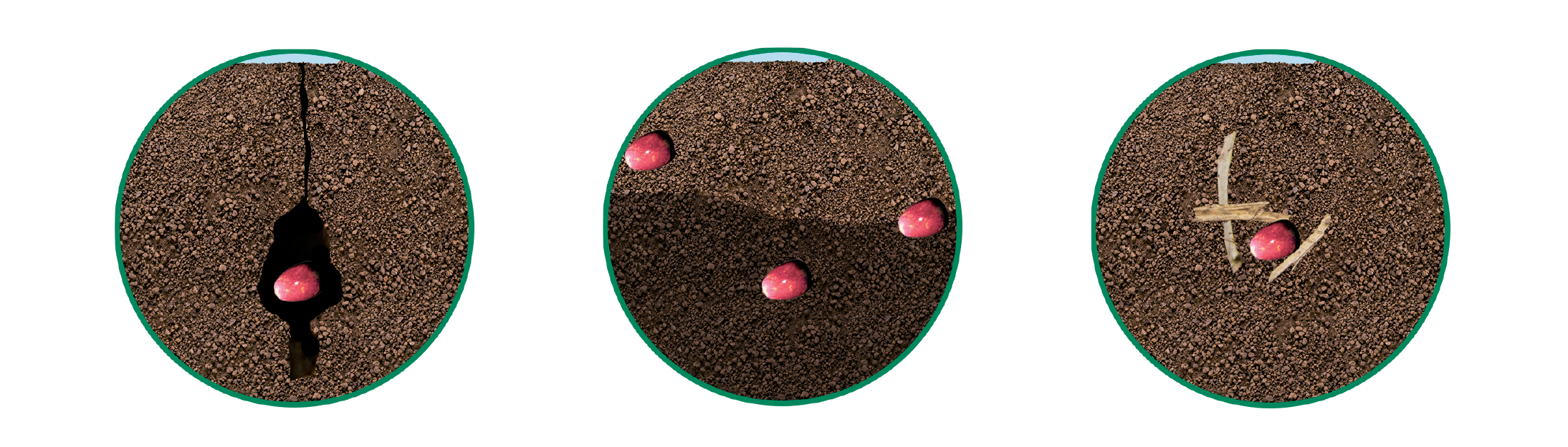 3 causes of uneven emergence