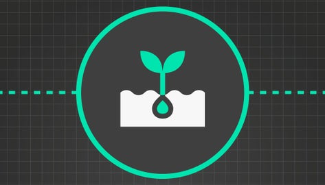 what causes uneven emergence icon of plant emerging from soil