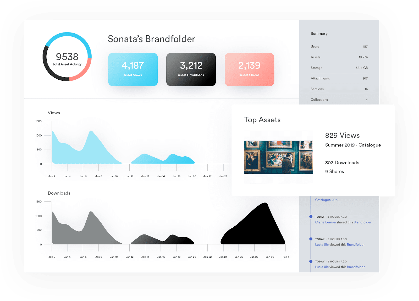 Display of Brandfolder asset insights