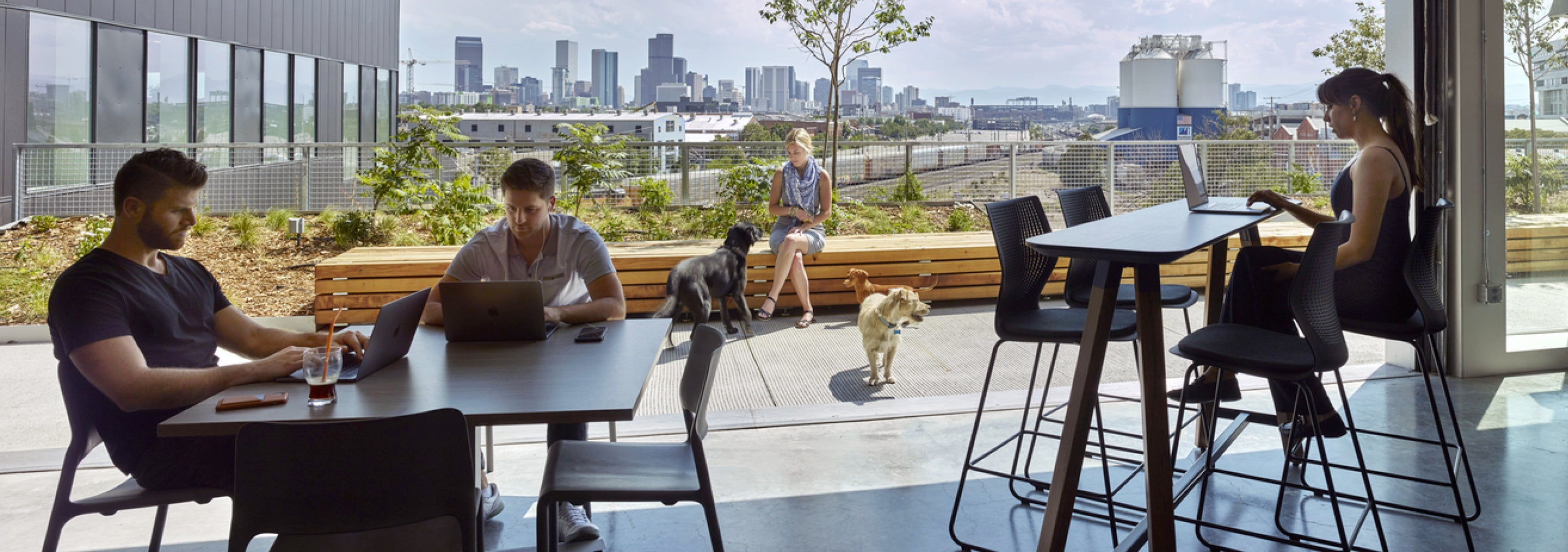 Three people work on laptops at indoor tables while another person and two dogs interact outside on the patio