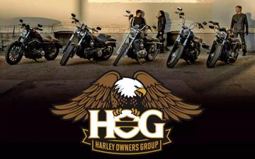 Harley hog group