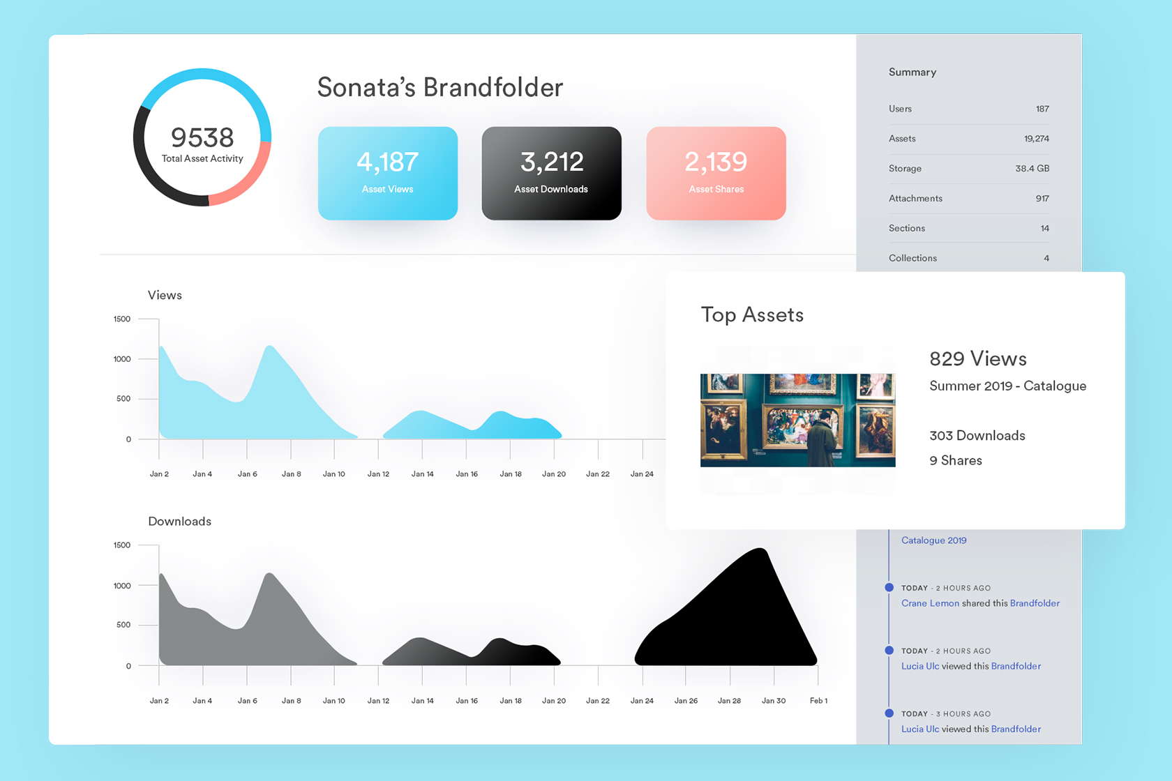 View of asset insights and analytics in Brandfolder
