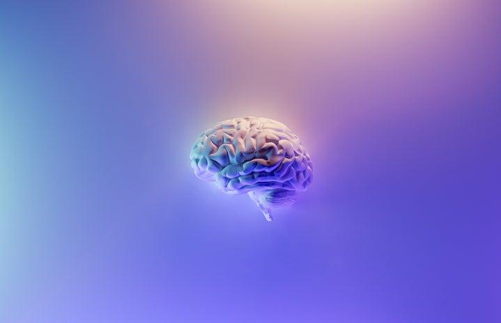 Brain with purple background