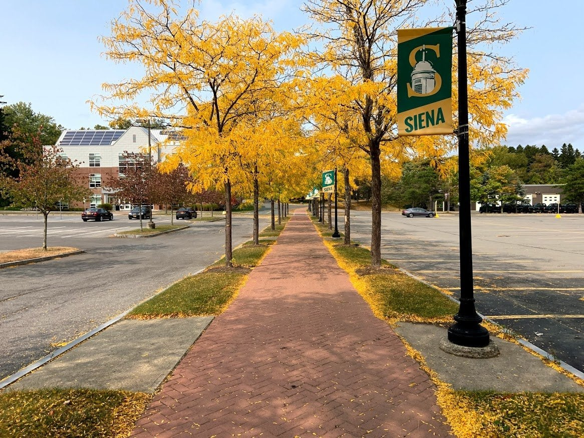 College campus path with yellow leaves