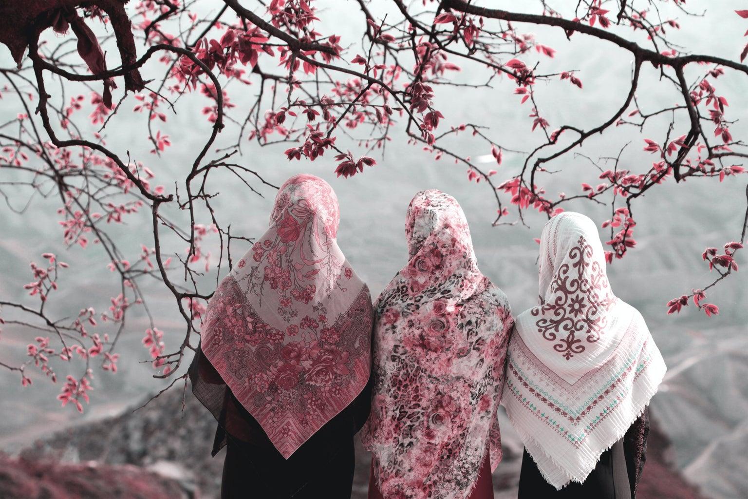 Three muslim women under a cherry blossom tree