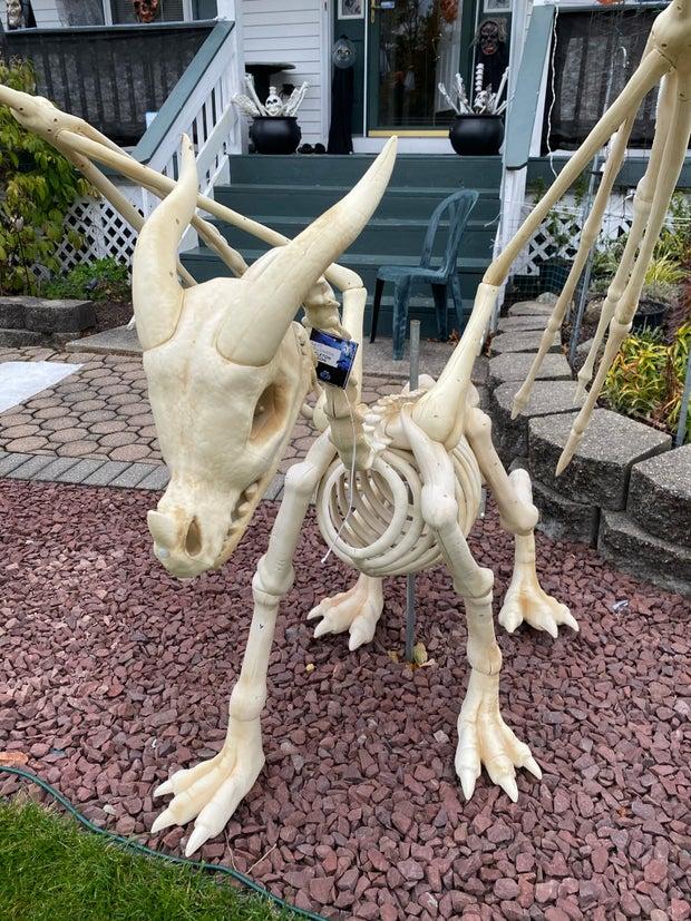 Dragon Skeleton Decoration