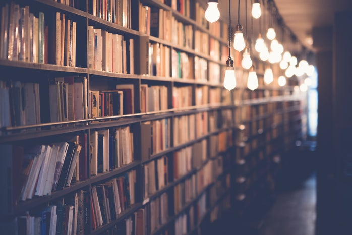 books on shelves with hanging lights