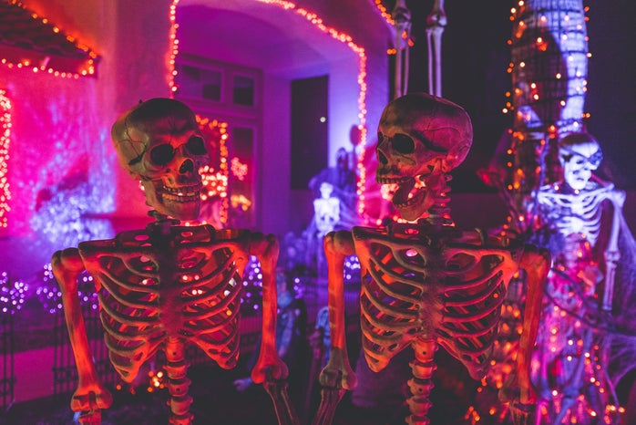 Purple Skeletons