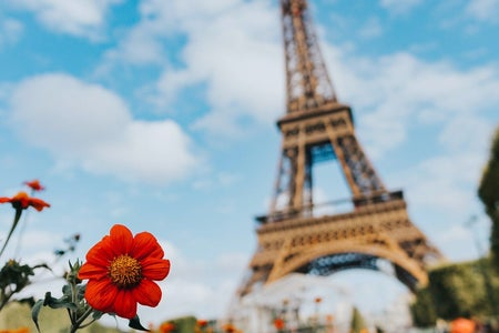 eiffel tower and flowers