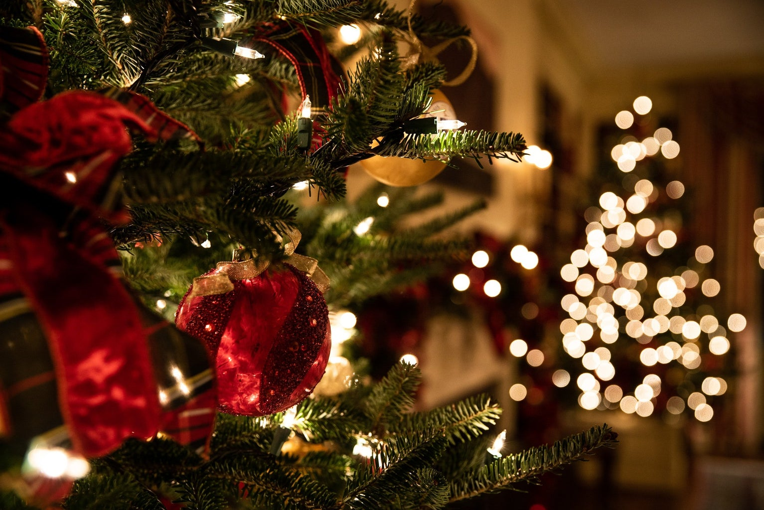 Christmas tree with lights and red and gold decorations