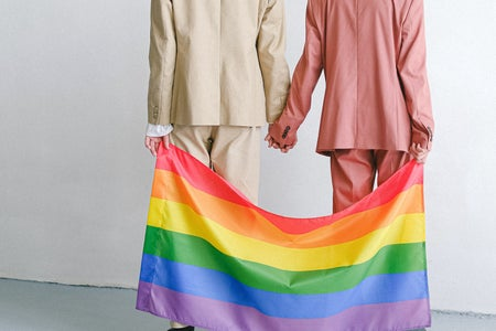 queer couple holding hands and pride flag