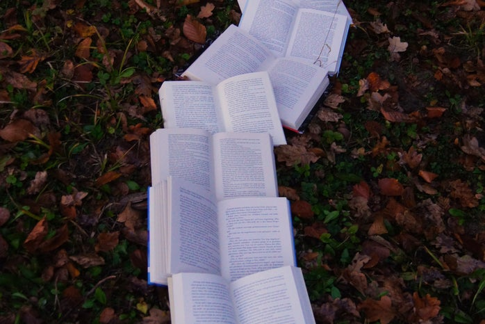 Open books on grass littered with fall leaves