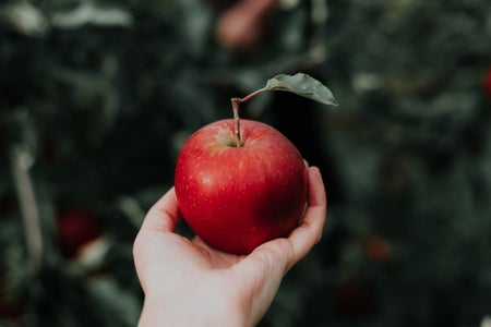 person holding a red apple