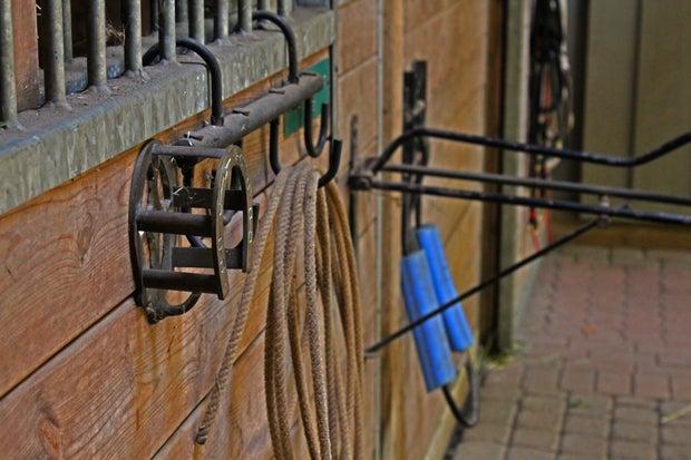 Bridal hook and horse stalls