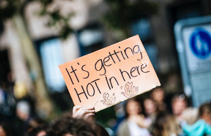 """person holding a sign that says """"it's getting hot in here"""""""