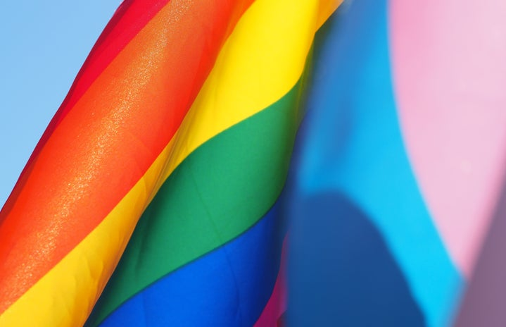 LGBTQ and Trans Flags