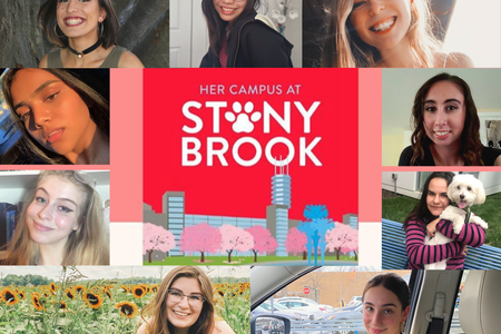 Get to know the Stony Brook Team Article