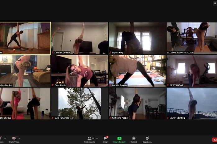 Zoom yoga call