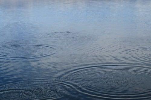 rain on a lake tear drops