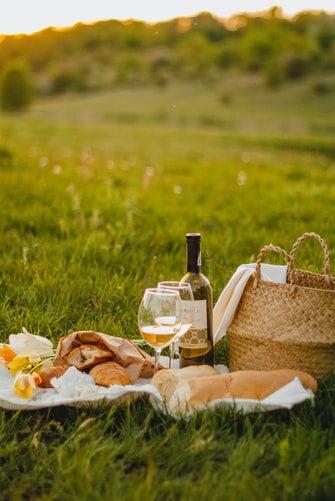 wine kind of picnic