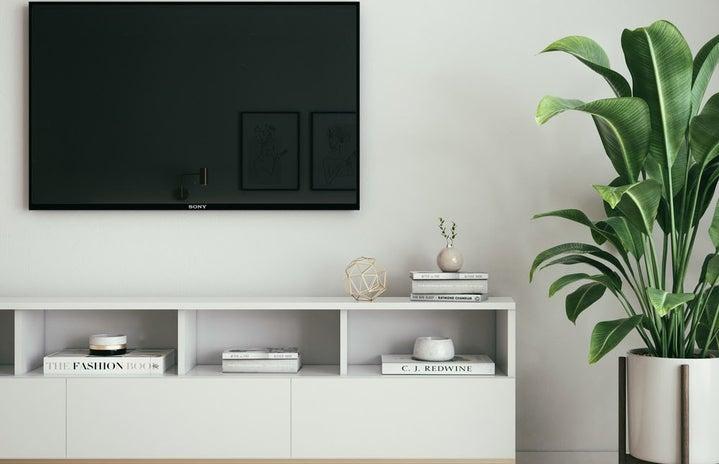 black tv with white bookshelf