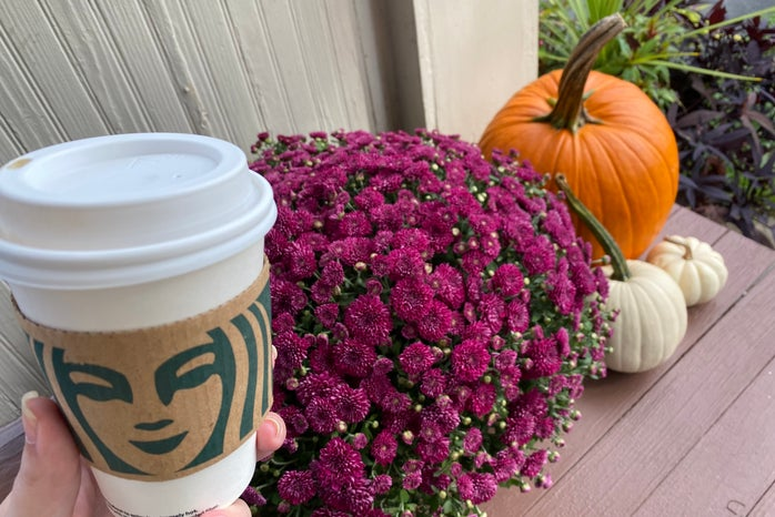 Starbucks drink with pumpkins and mums