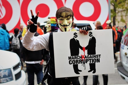 person wearing a guy fawkes mask at a protest