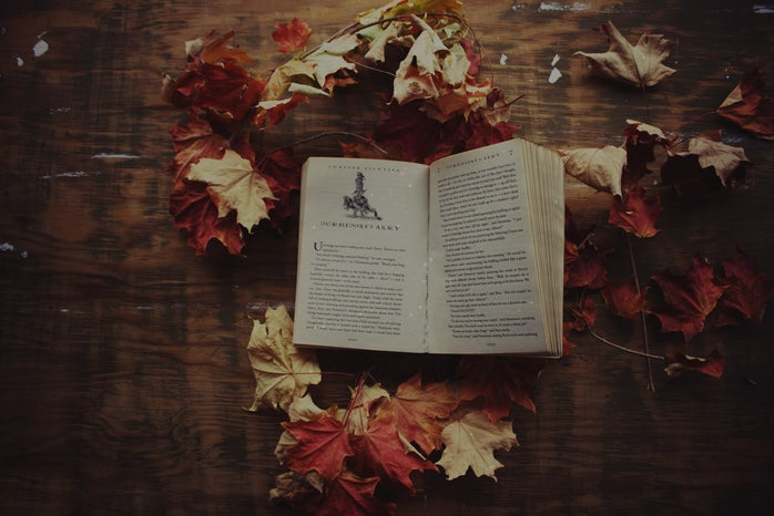 Thumbnail photo for fall with books