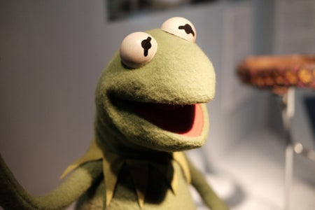 Kermit the Frog puppet on display at the Museum of the Moving Image