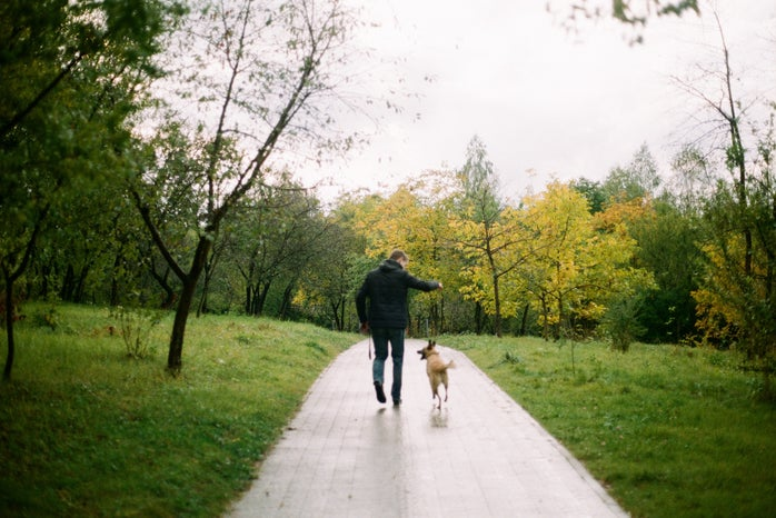 A man walking his dog in the forest
