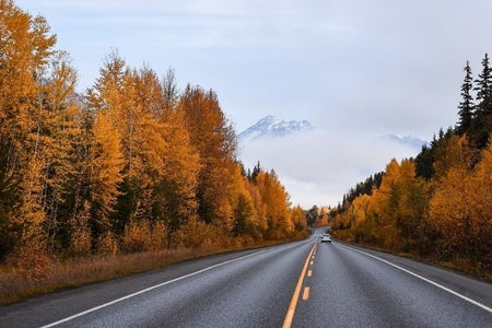 highway with fall-colored trees