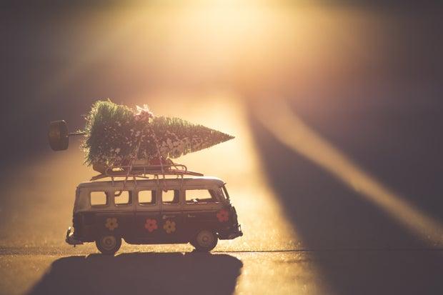 Christmas tree on mini bus