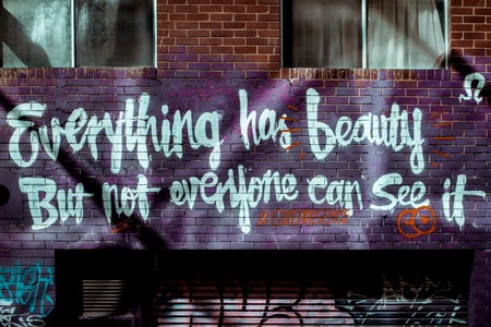 Everything has beauty street art