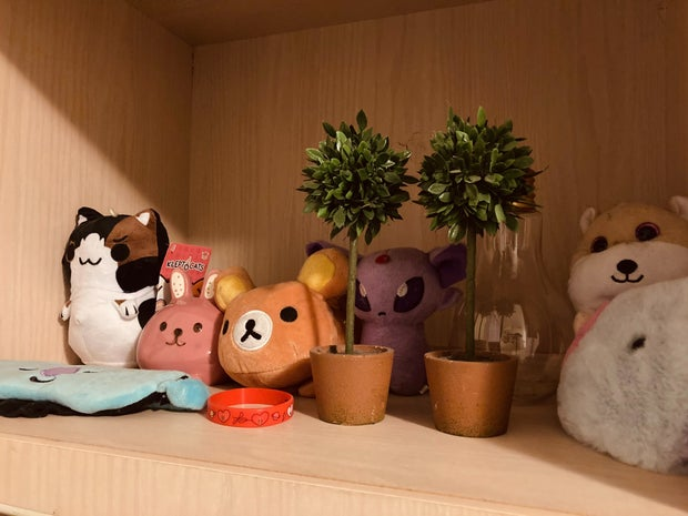Photo from shelf of plushies and other items in room