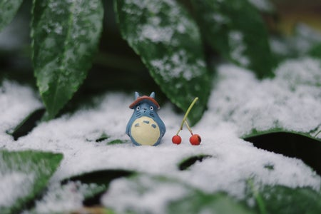 toy between leaves and snow
