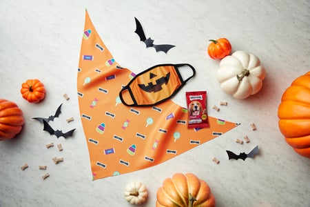 Milk-Bone Pumpkin and Candy Mask Set