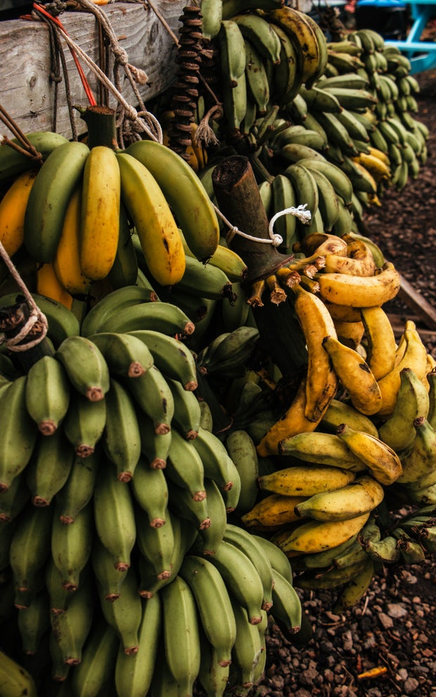 bunches of plantains