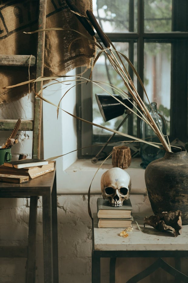 Cottage decor with some plants and a skull