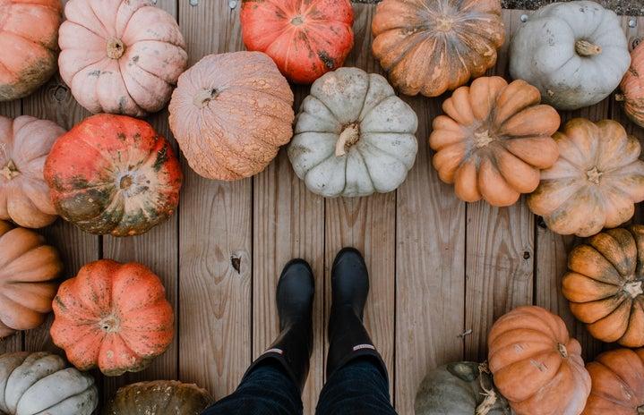 Standing around a variety of pumpkins