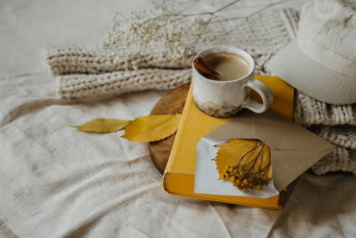 Coffee mug, book, yellow envelope, hat, leaves, blanket, and a plant on a bed.