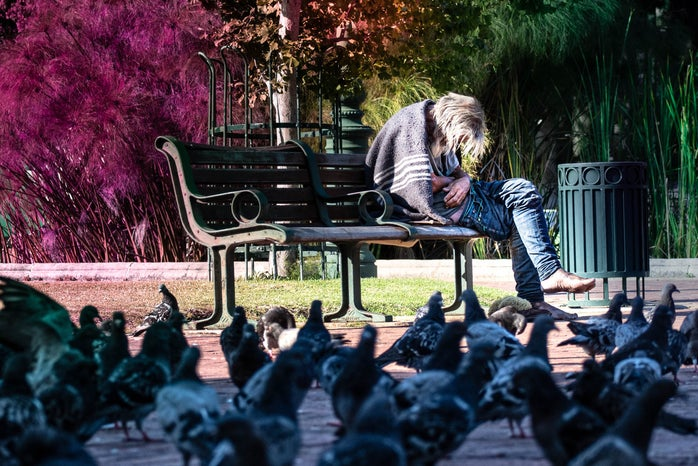 person on park bench surrounded by pigeons