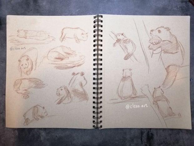 cleo sketches