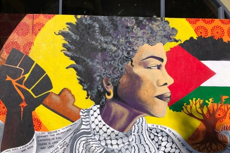 Painting of an African American woman, the Black Lives Matter logo and and a tree with the Palestinian flag.