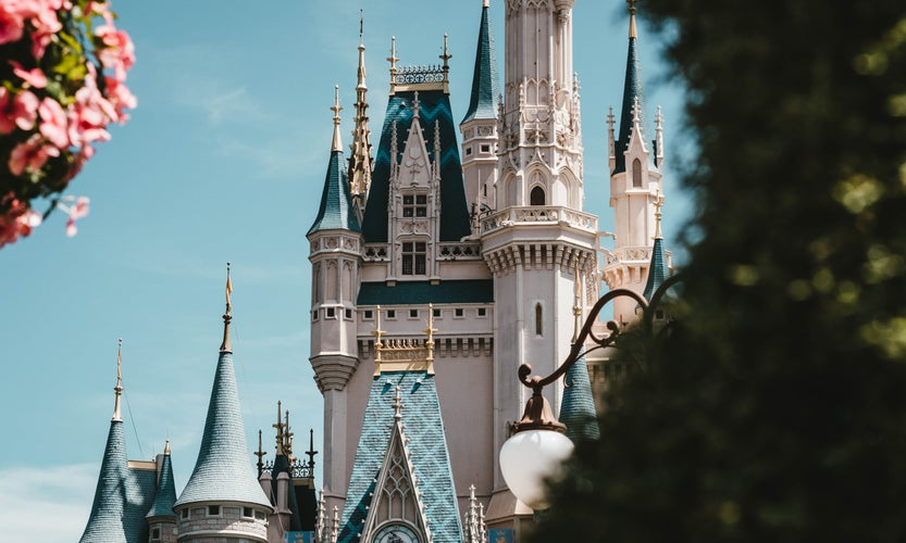 cinderella castle during the day, pink flowers on top left corner