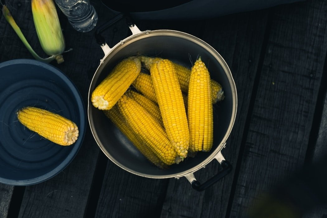pot full of ears of corn on table