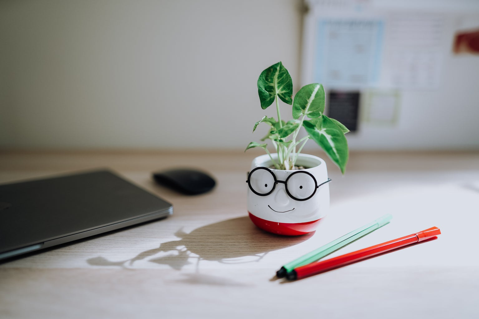 A desk with a laptop, a plant in a small pot and coloured pens.
