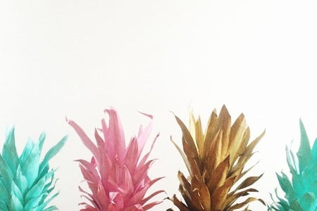 The Lalacolorful Pineapples