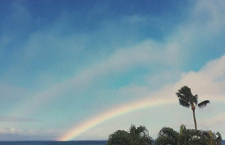 Sky Ocean Palm Trees Rainbow Nature Vacation