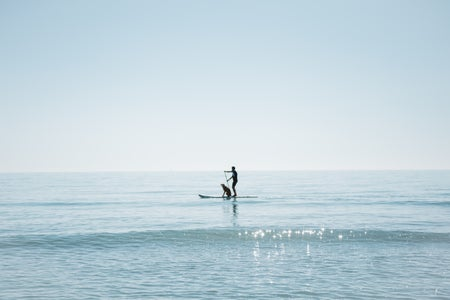 Cameron Smith-Barcelona Spain Abroad Beach Water Sea Sunny Summer Paddleboard Dog Man Relax Blue.Jpg